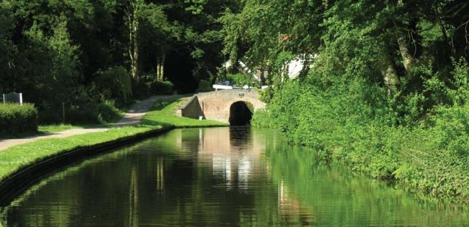 Canal Bridge Amid Luscious Greenery
